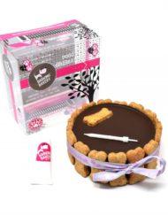 CAROB-YOGHURT-TOPPED-PAWTY-CAKE-BOXED