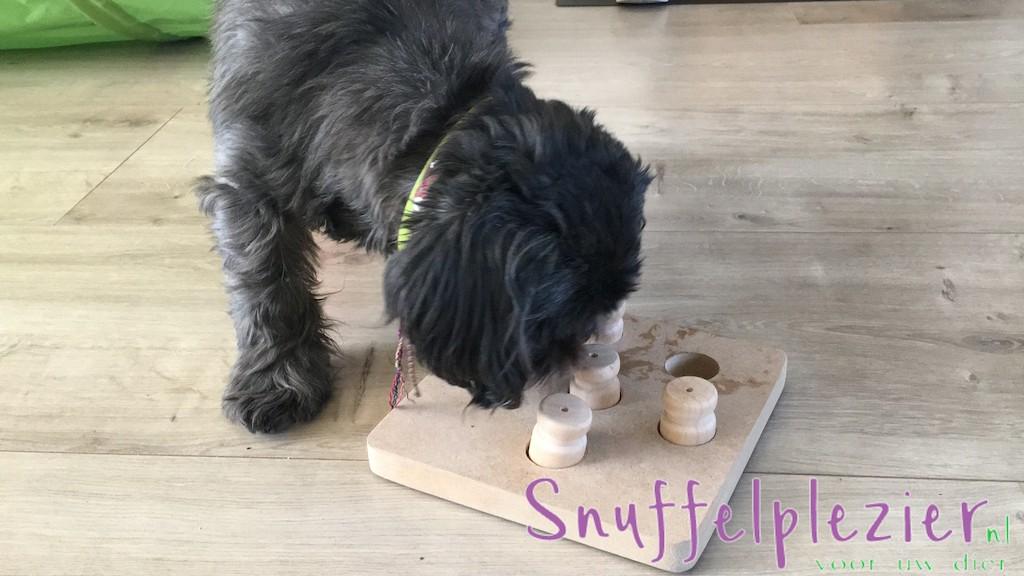 Dusty_snuffelplezier