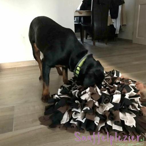 Snuffelussen maat L met hond