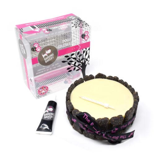 VANILLA-YOGHURT-TOPPED-PAWTY-CAKE-BOXED