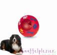 nobby snackball hond L